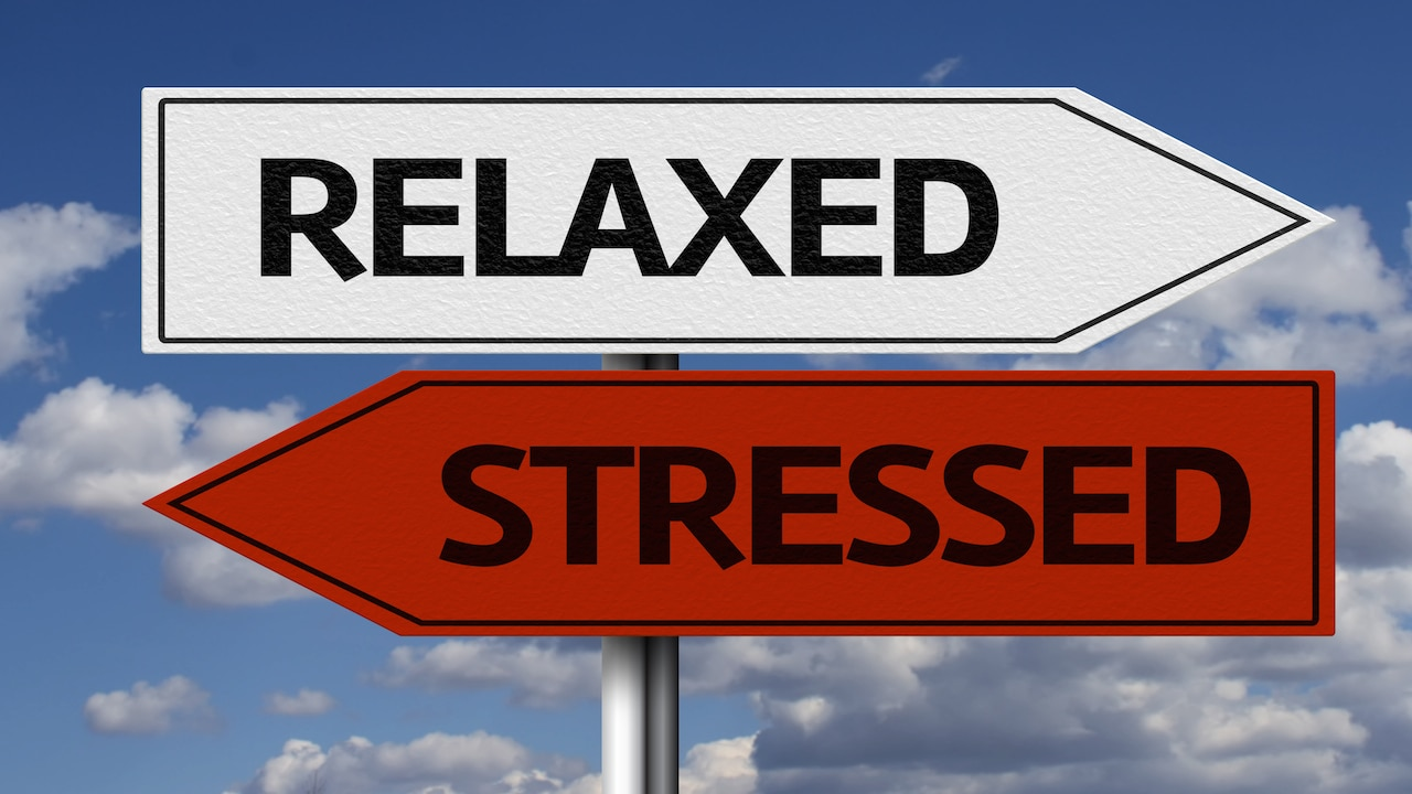 Guided Meditation: Six Simple Steps on Stress Reduction